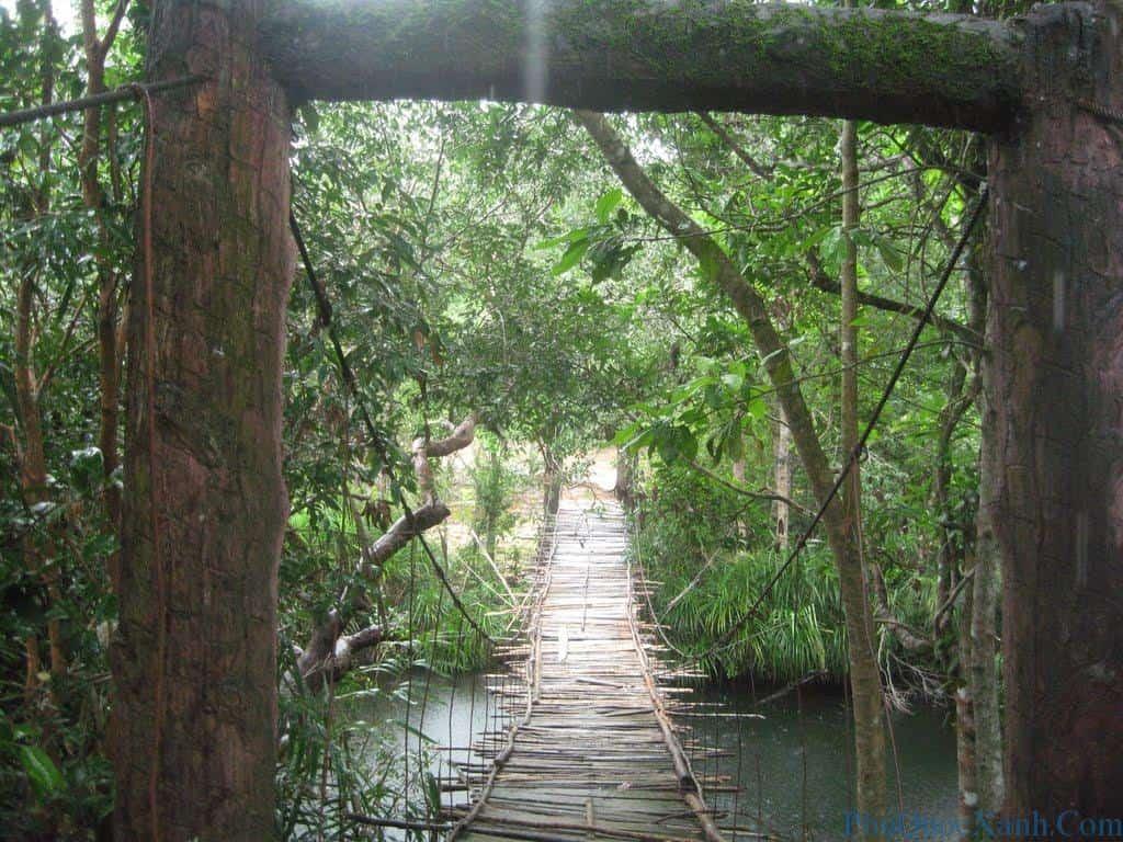 10 điều thú vị về du lịch Phú Quốc 16